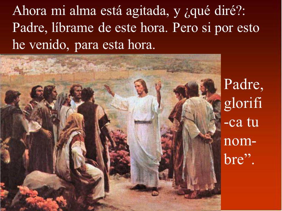 El que quiera servirme, que me siga, y donde esté yo, allí también estará mi servidor; a quien me sirva, el Padre lo pre- miará.