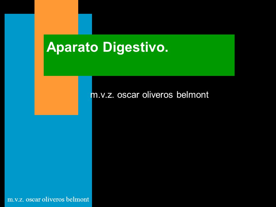 m.v.z. oscar oliveros belmont Aparato Digestivo.
