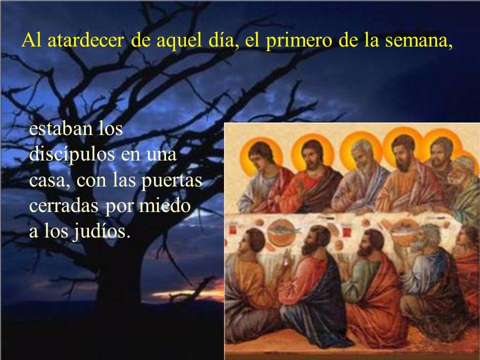 Veamos lo que nos dice el evangelio de este día. Está tomado del evangelio de san Juan Jn 20,19-31 Dice así: