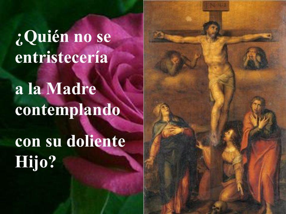 ¿Quién no se entristecería a la Madre contemplando con su doliente Hijo?