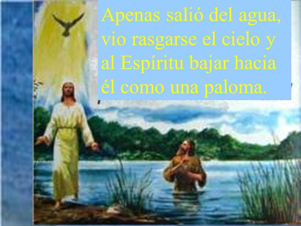 Por entonces llegó Jesús desde Nazaret de Galilea a que Juan lo bautizara en el Jordán.