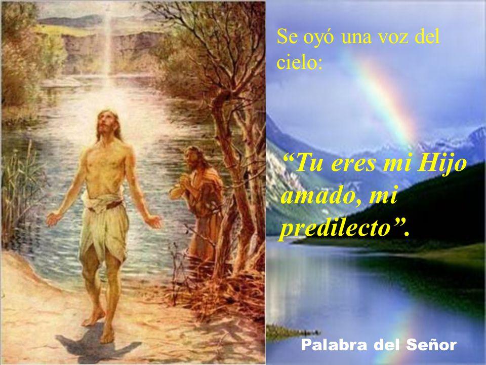 Apenas salió del agua, vio rasgarse el cielo y al Espíritu bajar hacia él como una paloma.
