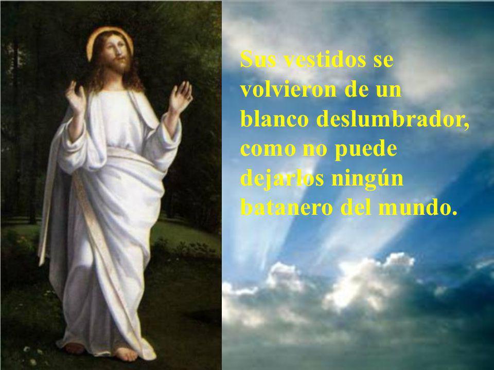 Y se transfiguró delante de ellos.