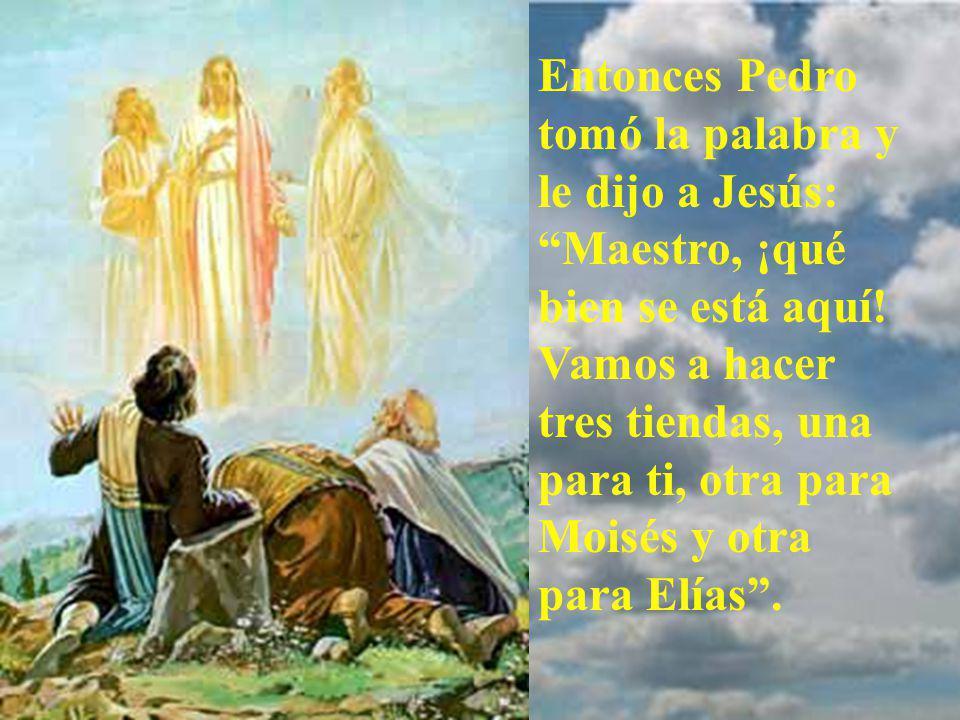 Se les aparecieron Elías y Moisés, conversando con Jesús.