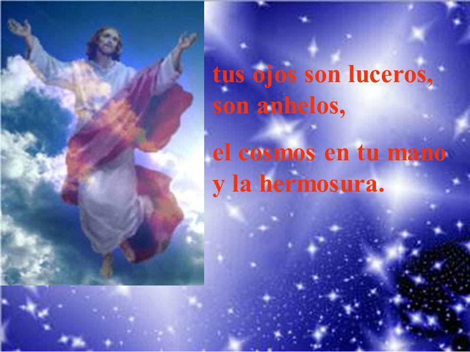 Divino Salvador, desde tu altura bendices, nieve y sol, azul en vuelo,