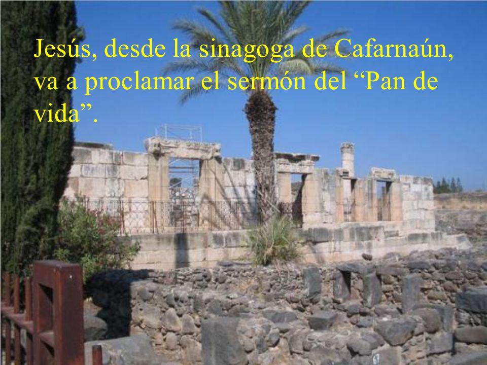 Jesús, desde la sinagoga de Cafarnaún, va a proclamar el sermón del Pan de vida.