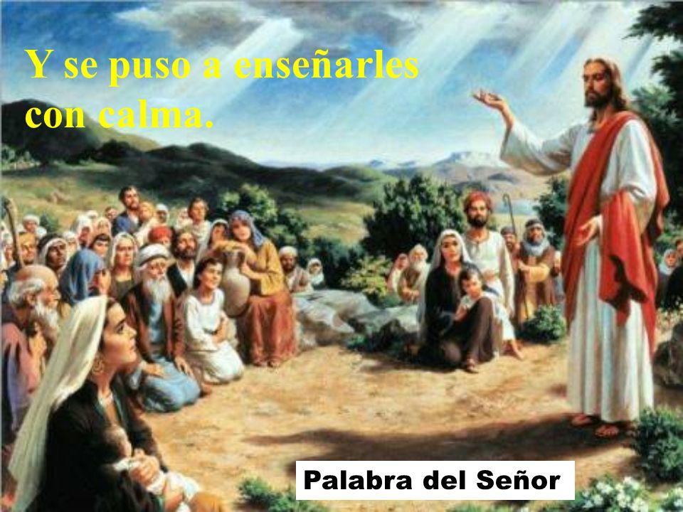 Al desembarcar, Jesús vio una multitud y le dio lástima de ellos, porque andaban como ovejas sin pastor;