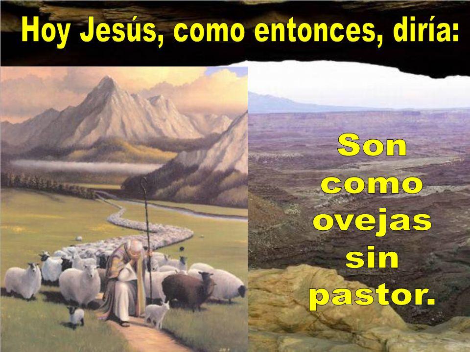 El apostolado nunca está de vacaciones porque siempre y en todas partes hay mucho que hacer para Dios.