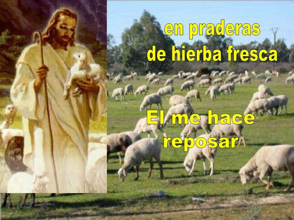 El Señor es mi pastor Nada me puede faltar;