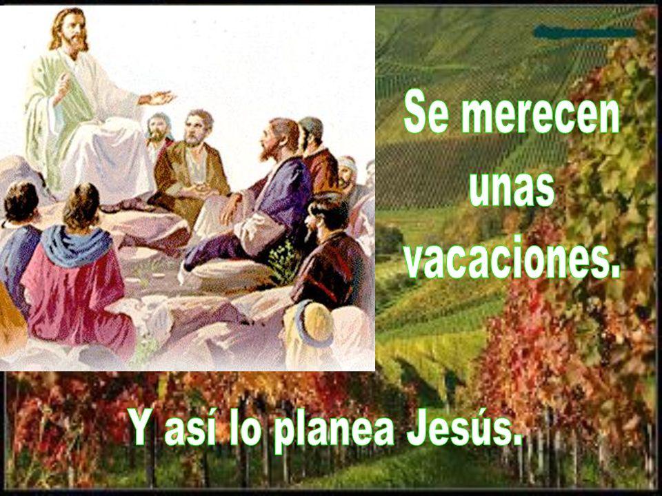 Hoy consideramos la vuelta. Los apóstoles están contentos, contando a Jesús la tarea bien hecha.