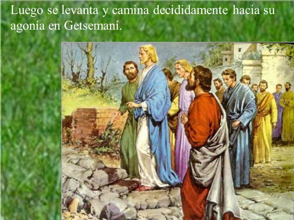 Acabada la cena, levanta Jesús los ojos al cielo: Padre, llegó la hora; glorifica a tu Hijo para que el Hijo te glorifique. Y pide por la unidad. Y pi