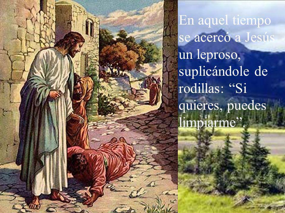 En aquel tiempo se acercó a Jesús un leproso, suplicándole de rodillas: Si quieres, puedes limpiarme.