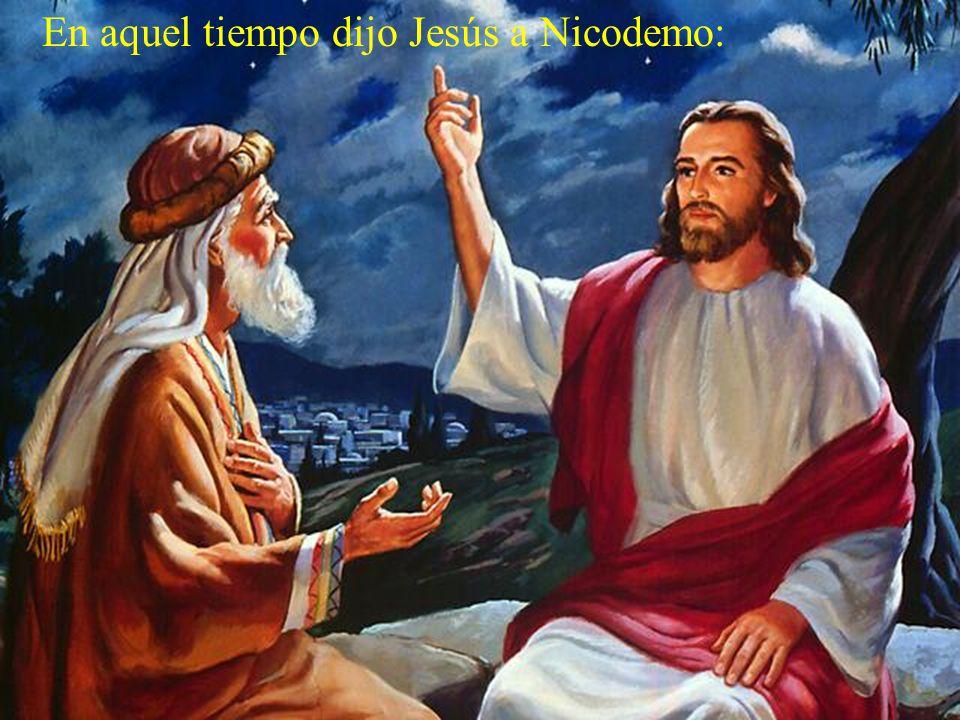 El evangelio de este día está tomado de san Juan.
