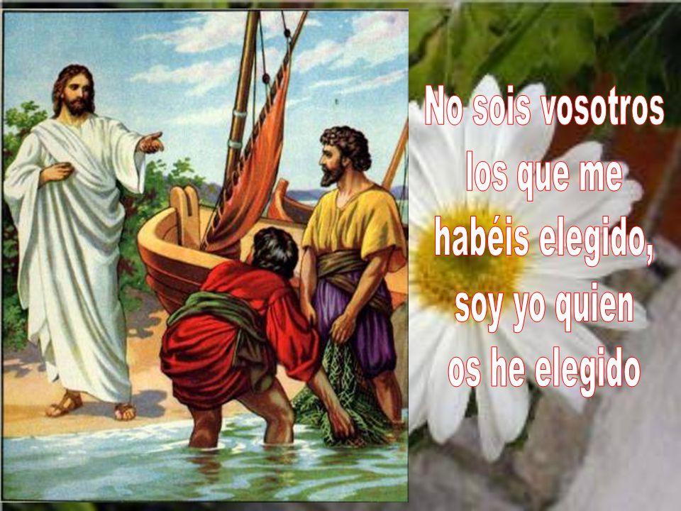 Ya no os llamo siervos, porque el siervo no sabe lo que hace su señor; a vosotros os llamo amigos, porque todo lo que he oído a mi Padre os lo he dado