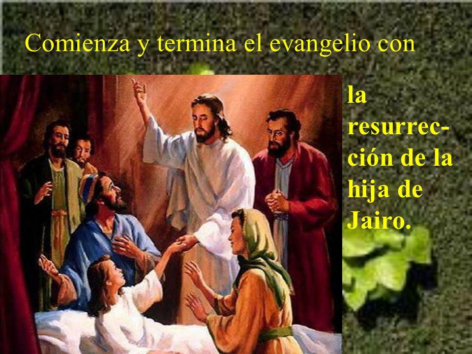 Hoy en el evangelio se nos habla de dos milagros de Jesús, que se entremezclan.
