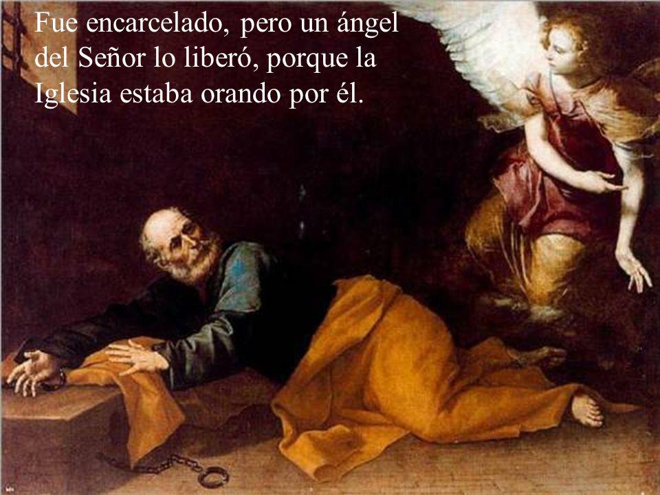 Después de Pentecostés san Pedro fue el primero en predicar públicamente la doctrina de Jesús haciendo nuevos discípulos. Predicaba y sanaba muchos en