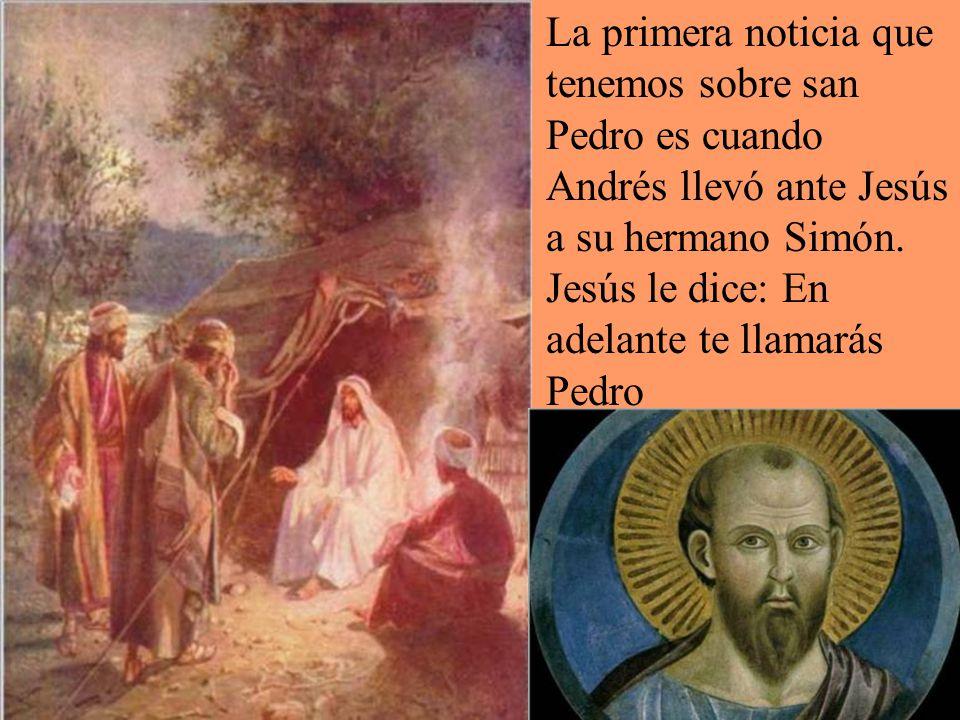 La primera noticia que tenemos sobre san Pedro es cuando Andrés llevó ante Jesús a su hermano Simón.