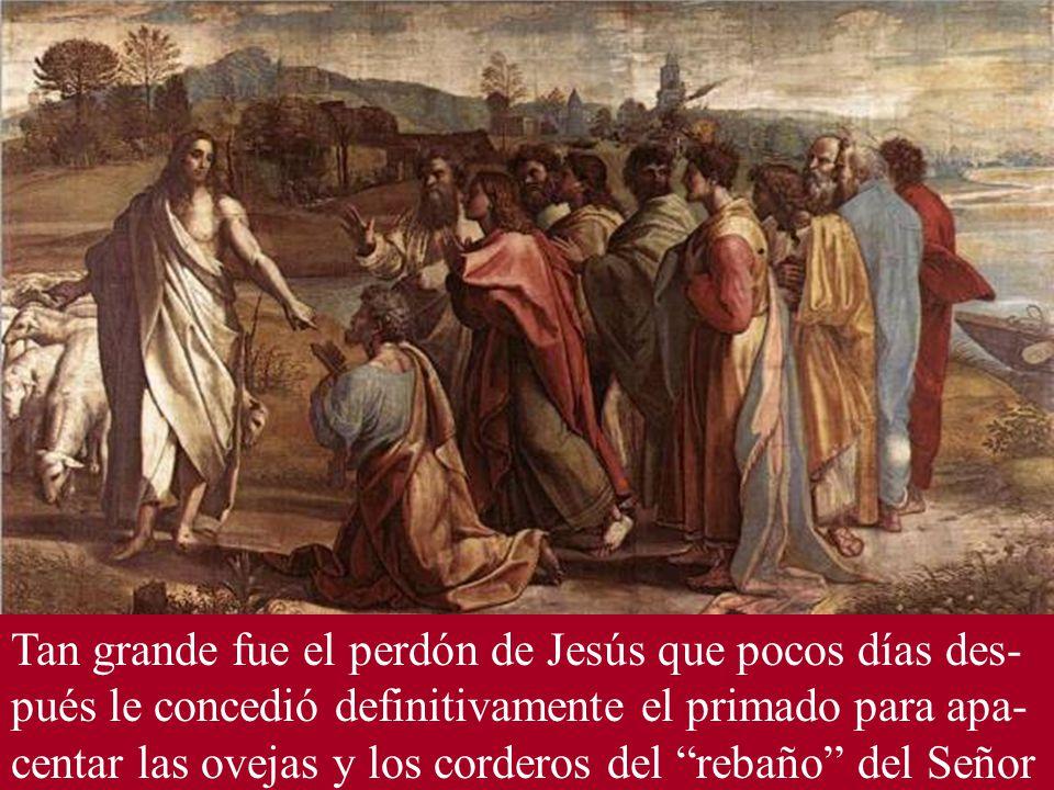 Tan grande fue el perdón de Jesús que pocos días des- pués le concedió definitivamente el primado para apa- centar las ovejas y los corderos del rebaño del Señor