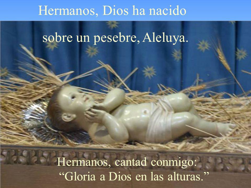 La Iglesia hoy nos invita a la ALEGRÍA, porque Dios ha venido como Niño a nosotros para salvarnos.