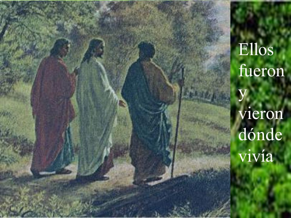 Él les dijo: Venid y lo veréis.