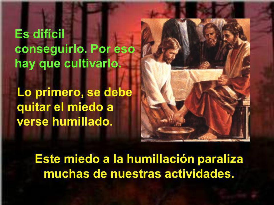 Cuanto más humildes seamos, mejor encontraremos a Dios. Y Dios nos mirará con mayor misericordia. El humilde es quien no se siente amenazado por las c