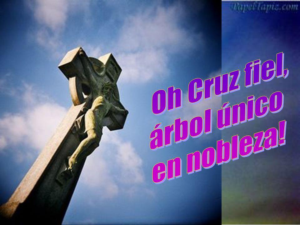 Jesús muere en la cruz. Es nuestro Dios. Adorémosle con el himno de LAUDES de este día de viernes santo.