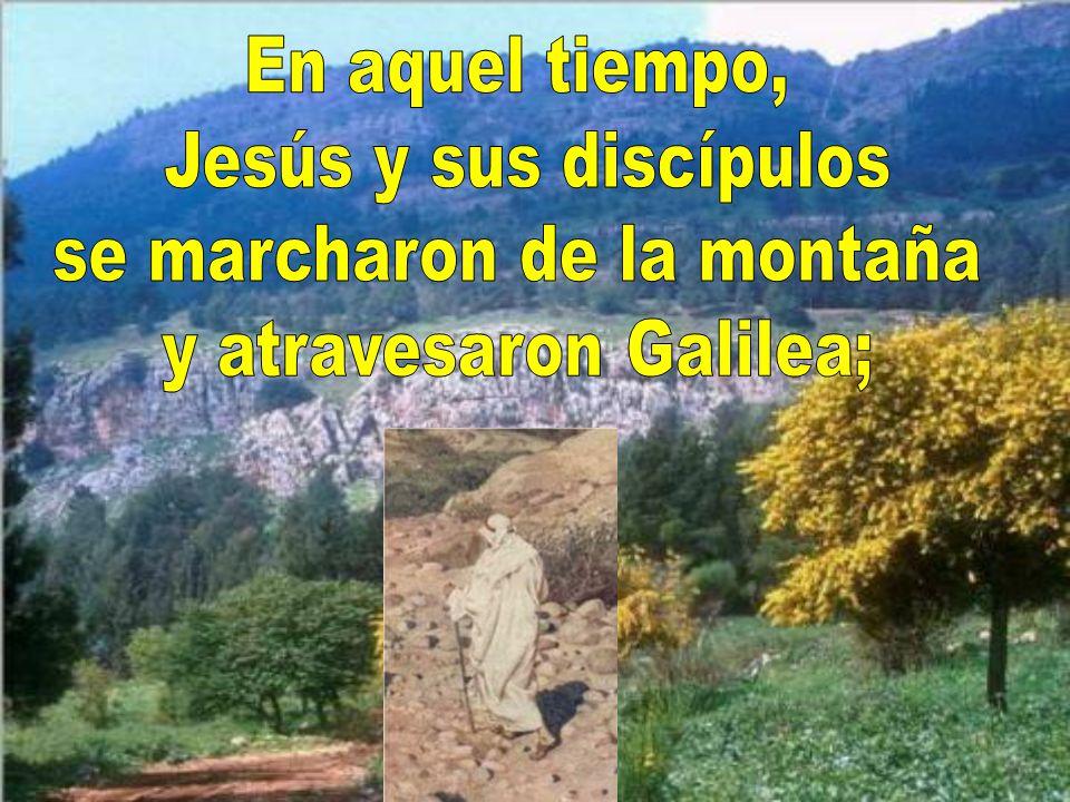 Veamos lo que nos dice hoy el evangelio Lo narra el evangelista san Marcos Mc 9, 30-37 Dice así: