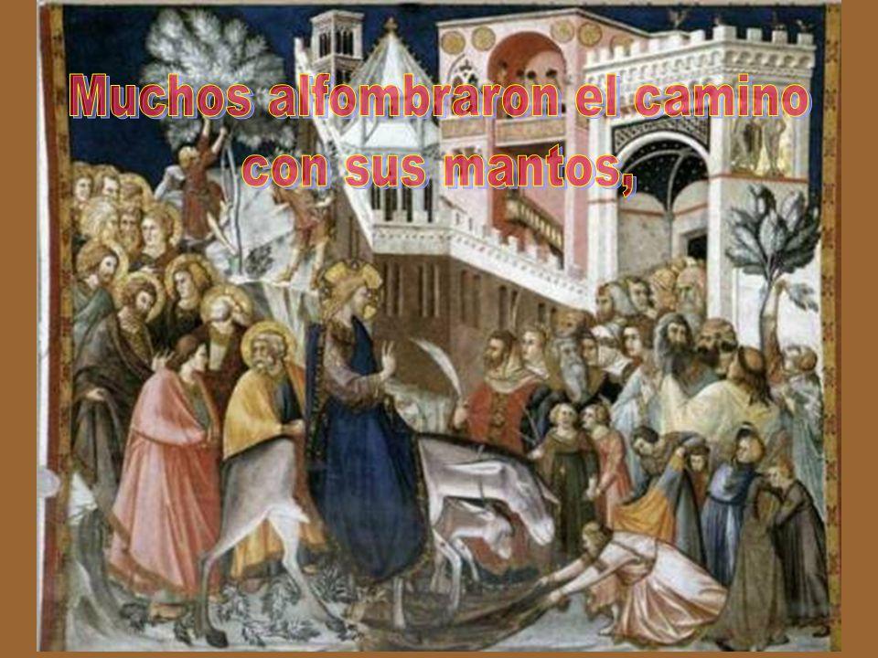 Llevaron el borrico, le echaron encima sus mantos, y Jesús se montó.