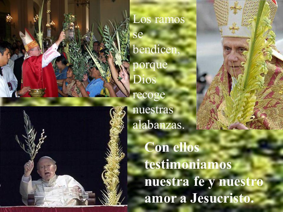 Primero queremos rendir alabanzas a Cristo con nuestros ramos, símbolo de la alegría del corazón.