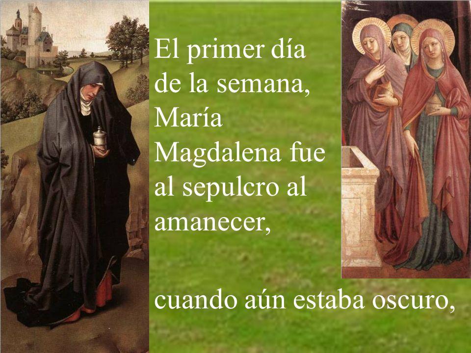 Hoy el evangelio nos habla de san Pedro y san Juan, corriendo hacia el sepulcro de Jesús.