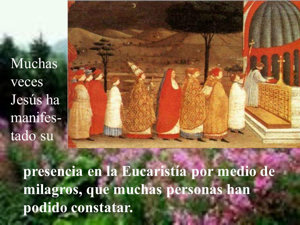 Hoy se insiste principalmente en la presencia real de Jesús en la Eucaristía.