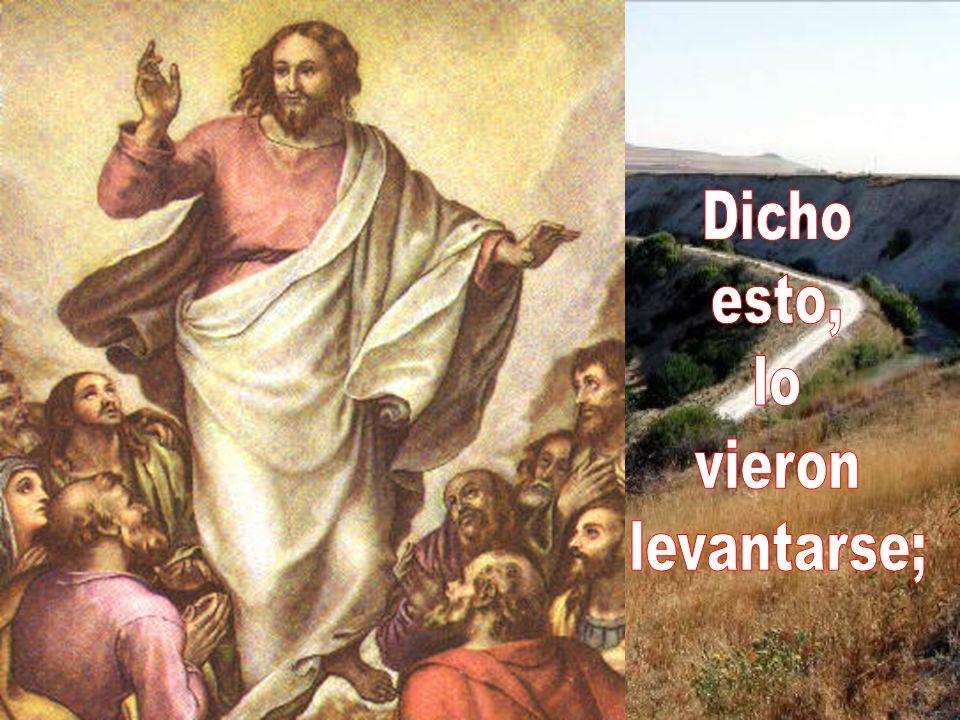 Cuando el Espíritu Santo descienda sobre vosotros, recibiréis fuerza para ser mis testigos en Jerusalén, en toda Judea, en Samaria y hasta los confines del mundo.