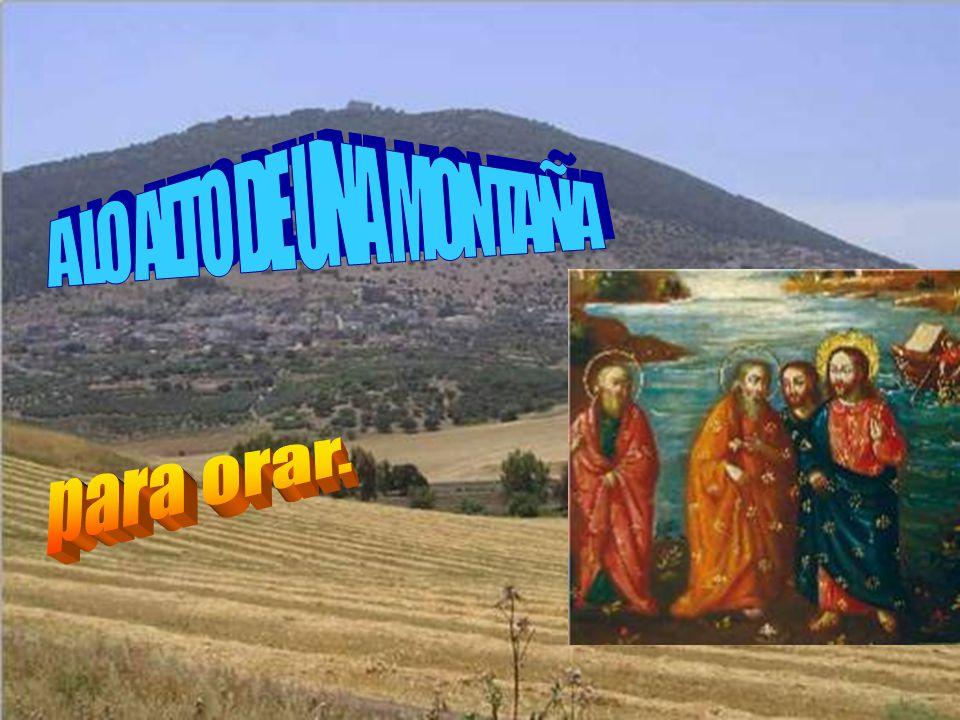En aquel tiempo, Jesús se llevó a Pedro, a Juan y a Santiago