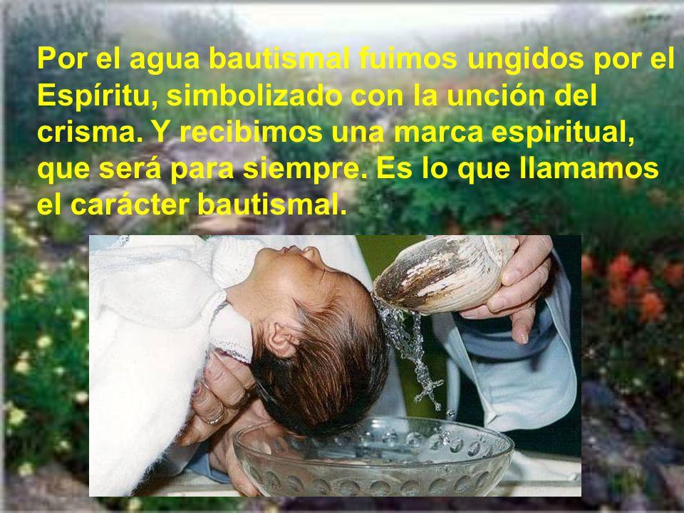 Hoy es un día muy oportuno para que apreciemos nuestro bautismo.