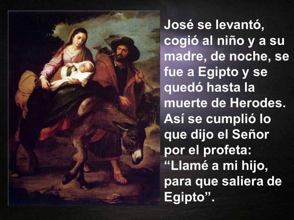 Cuando se marcha- ron los magos, el ángel del Señor se apareció en sueños a José y le dijo: Leván- tate, coge al niño y a su madre y huye a Egipto: qu