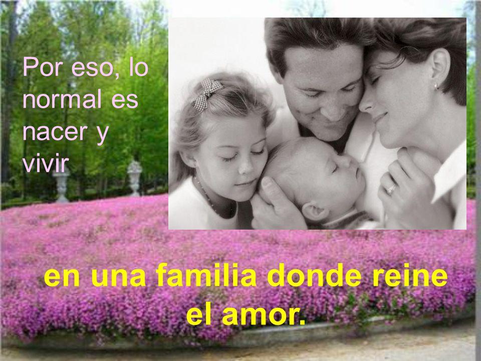 Estamos hechos a imagen de Dios, que es una familia: la Santísima Trinidad. Aunque uno viva solo, debe imitar a Dios Trinidad, por la apertura de vida