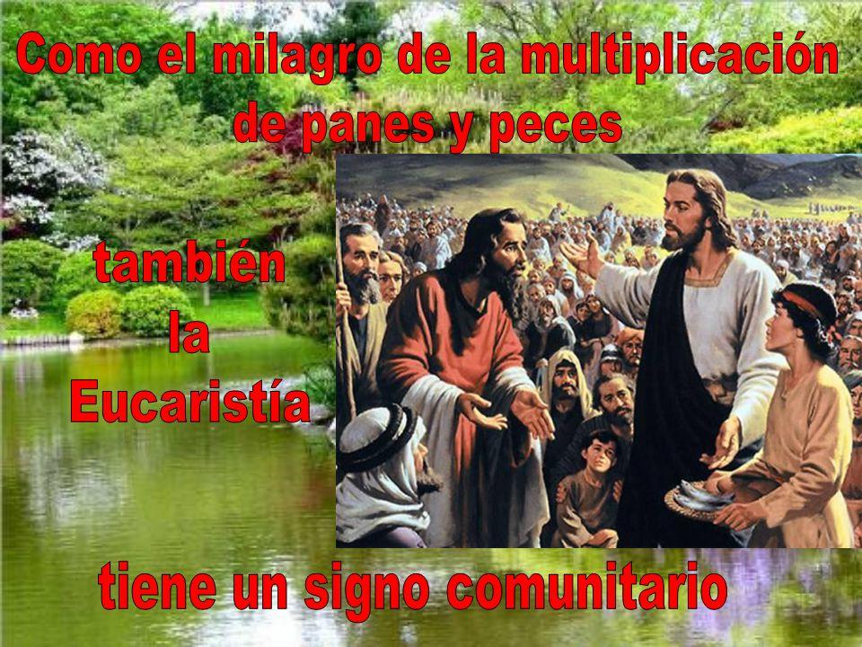Jesús, para bendecir el pan que va a ser multiplicado, hace gestos parecidos