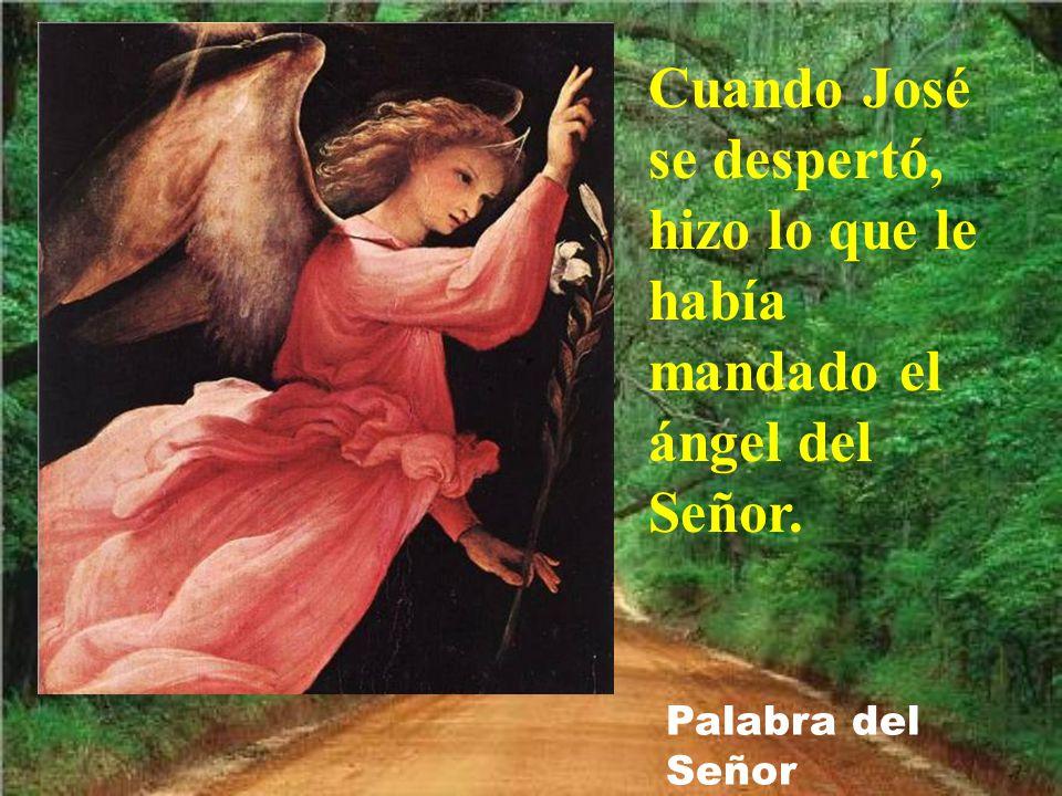 Cuando José se despertó, hizo lo que le había mandado el ángel del Señor. Palabra del Señor