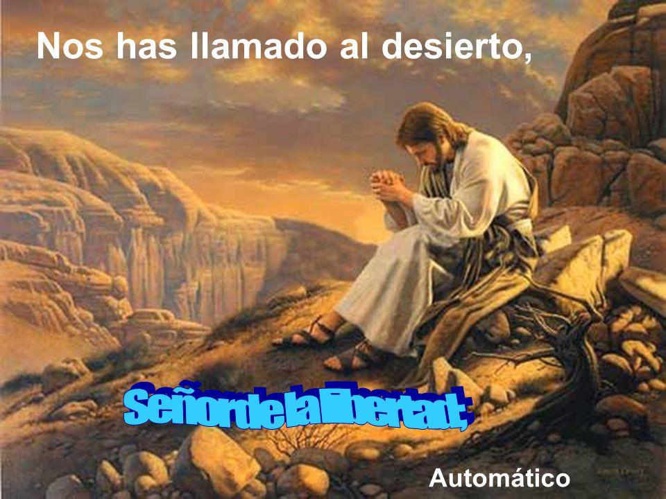Es tan importante el poderse retirar para estar a solas con Dios que el Espíritu empujó a Jesús al desierto.