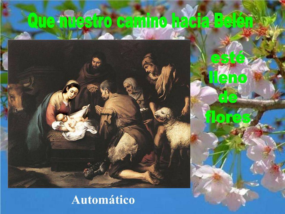Flores para el Niño Jesús