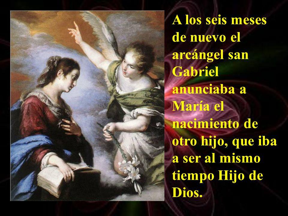 Todos debemos ser un poco como san Juan Bautista: anunciadores de la salvación de Dios y de su gran misericordia.