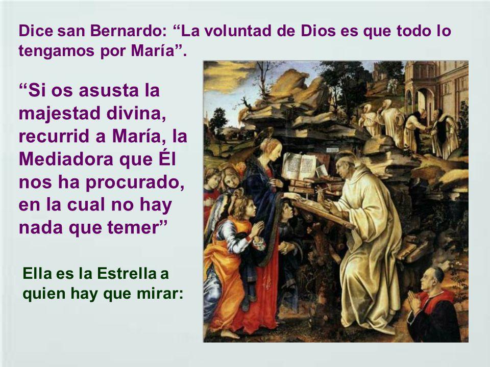 Tuvo un papel importante en la propagación del culto a la Virgen María. De entre sus sermones el más famoso es el del acueducto. Dice: Si te dispones