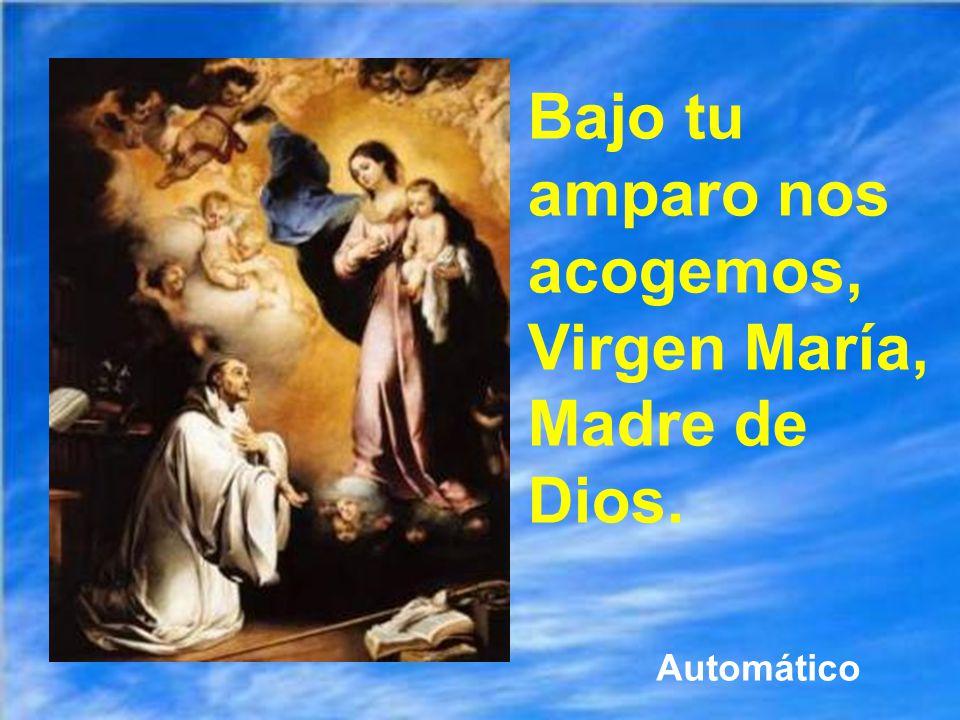 Bajo tu amparo nos acogemos, Virgen María, Madre de Dios. Automático
