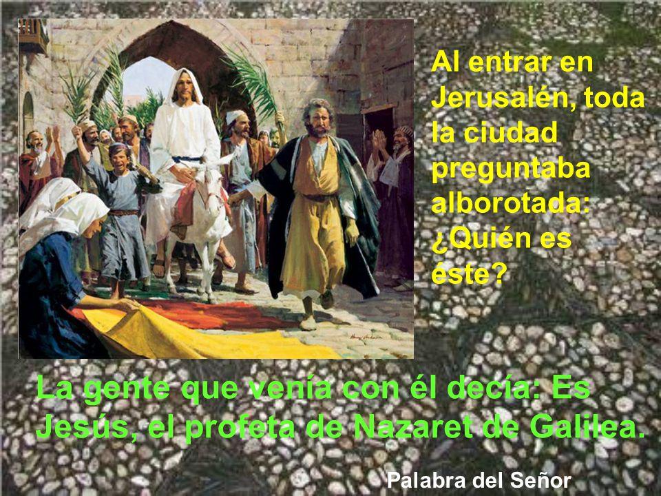 Y la gente que iba delante y detrás gritaba: ¡Viva el Hijo de David! ¡Bendito el que viene en nombre del Señor!