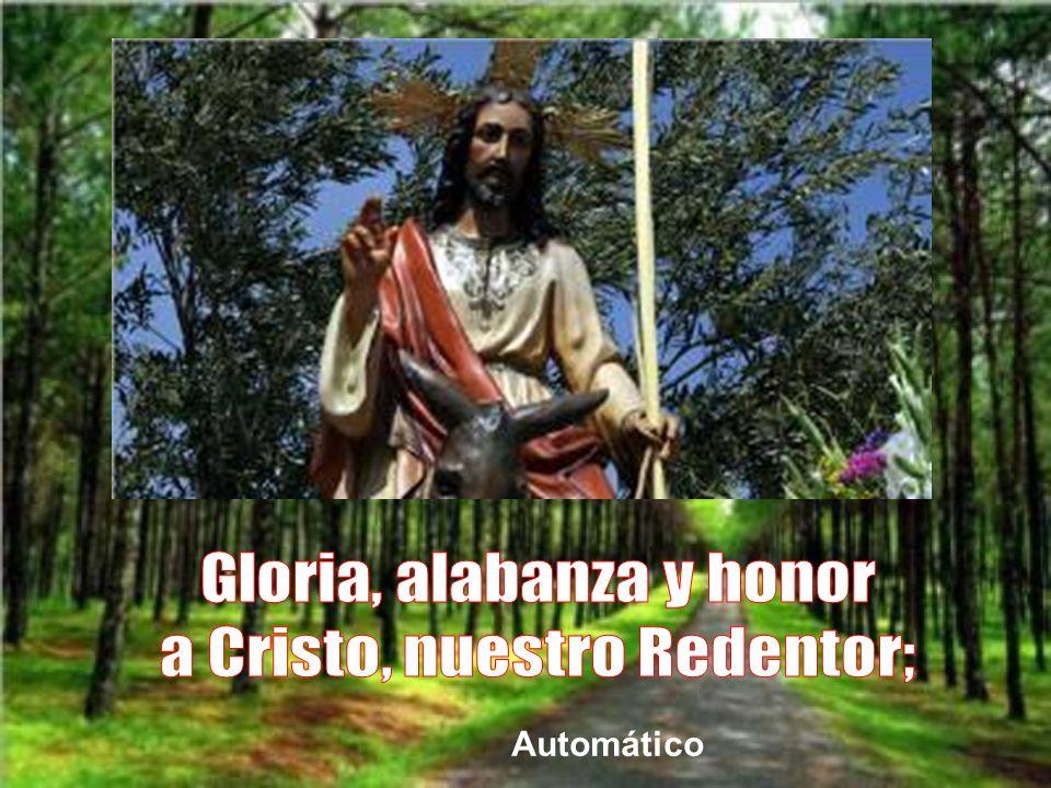 Por todo ello, el domingo de ramos debe ser un himno de gloria y alabanza para Jesús, nuestro Salvador y Redentor.