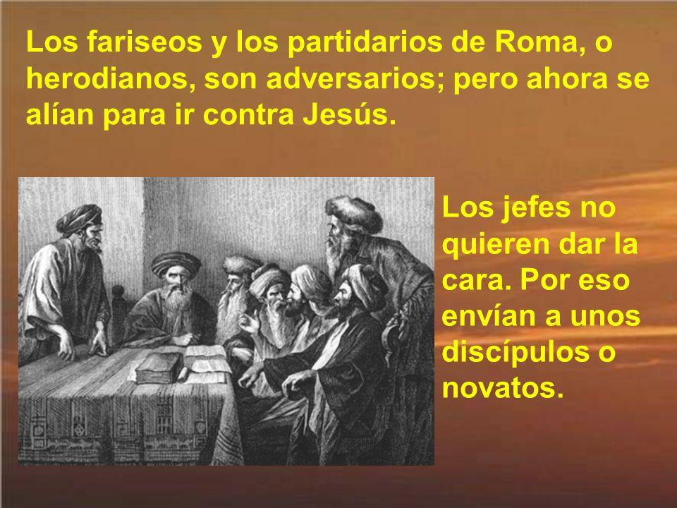 Entonces se proponen poner a Jesús una trampa en la que están seguros que ha de caer.