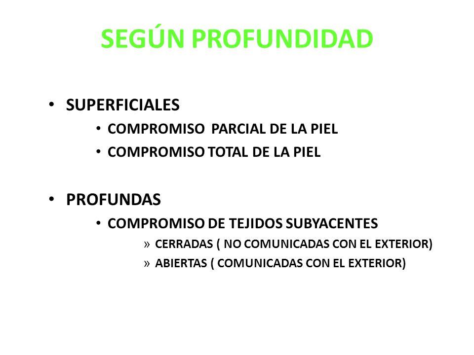 SEGÚN PROFUNDIDAD SUPERFICIALES COMPROMISO PARCIAL DE LA PIEL COMPROMISO TOTAL DE LA PIEL PROFUNDAS COMPROMISO DE TEJIDOS SUBYACENTES » CERRADAS ( NO COMUNICADAS CON EL EXTERIOR) » ABIERTAS ( COMUNICADAS CON EL EXTERIOR)