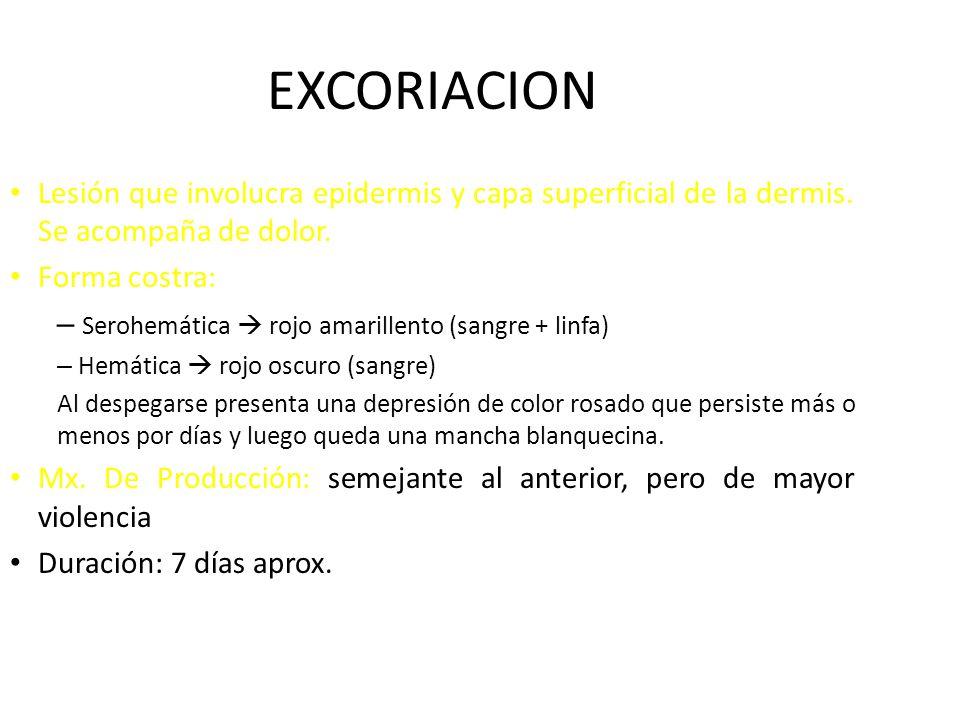 EXCORIACION Lesión que involucra epidermis y capa superficial de la dermis. Se acompaña de dolor. Forma costra: – Serohemática rojo amarillento (sangr
