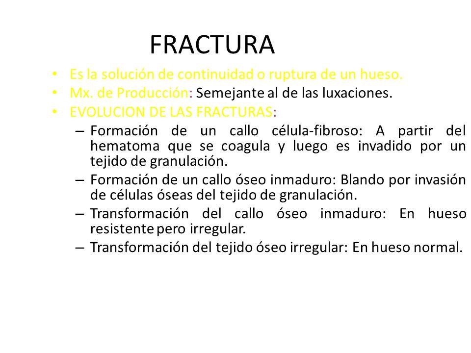 FRACTURA Es la solución de continuidad o ruptura de un hueso. : Mx. de Producción: Semejante al de las luxaciones. : EVOLUCION DE LAS FRACTURAS: – For