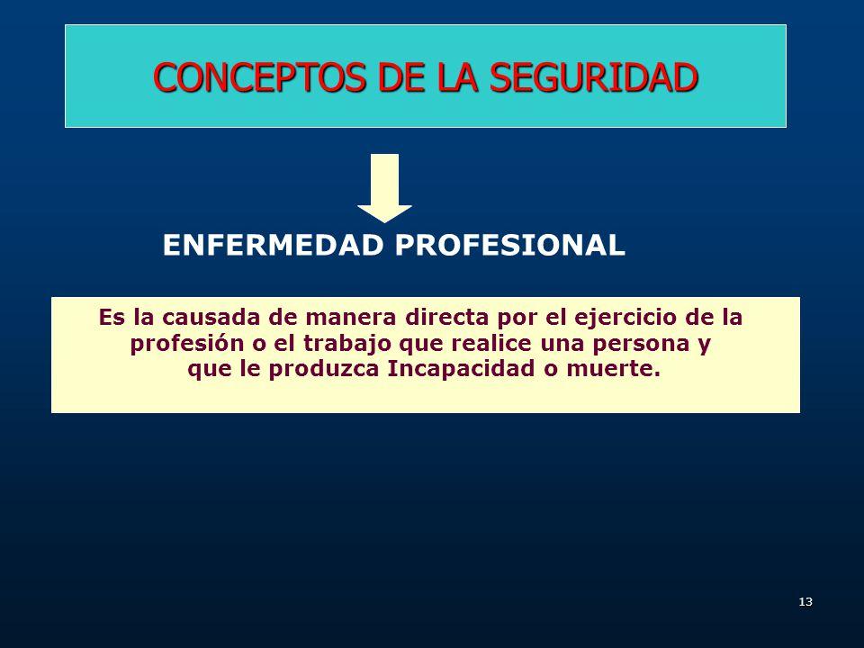 12 CONCEPTOS DE LA SEGURIDAD RIESGO Es la probabilidad de que en una actividad o condición se produzca una pérdida determinada. PELIGRO Es cualquier c